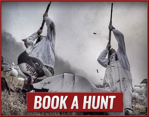 Book A Hunt With The Goose Guys Waterfowl Hunting LLC